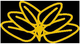 icono_amarillo_grande